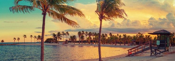 Beach-miami1.jpg