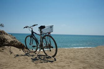 bike335.jpg